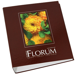 Florum ring binder / D65